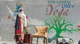 sadhguru at UN 2